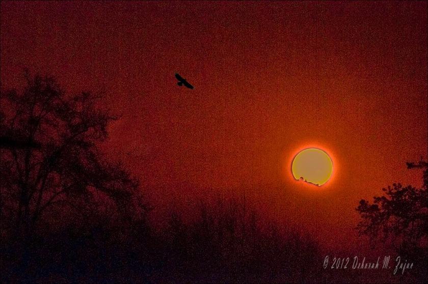 Sunrise over Lick Observatory San Jose California