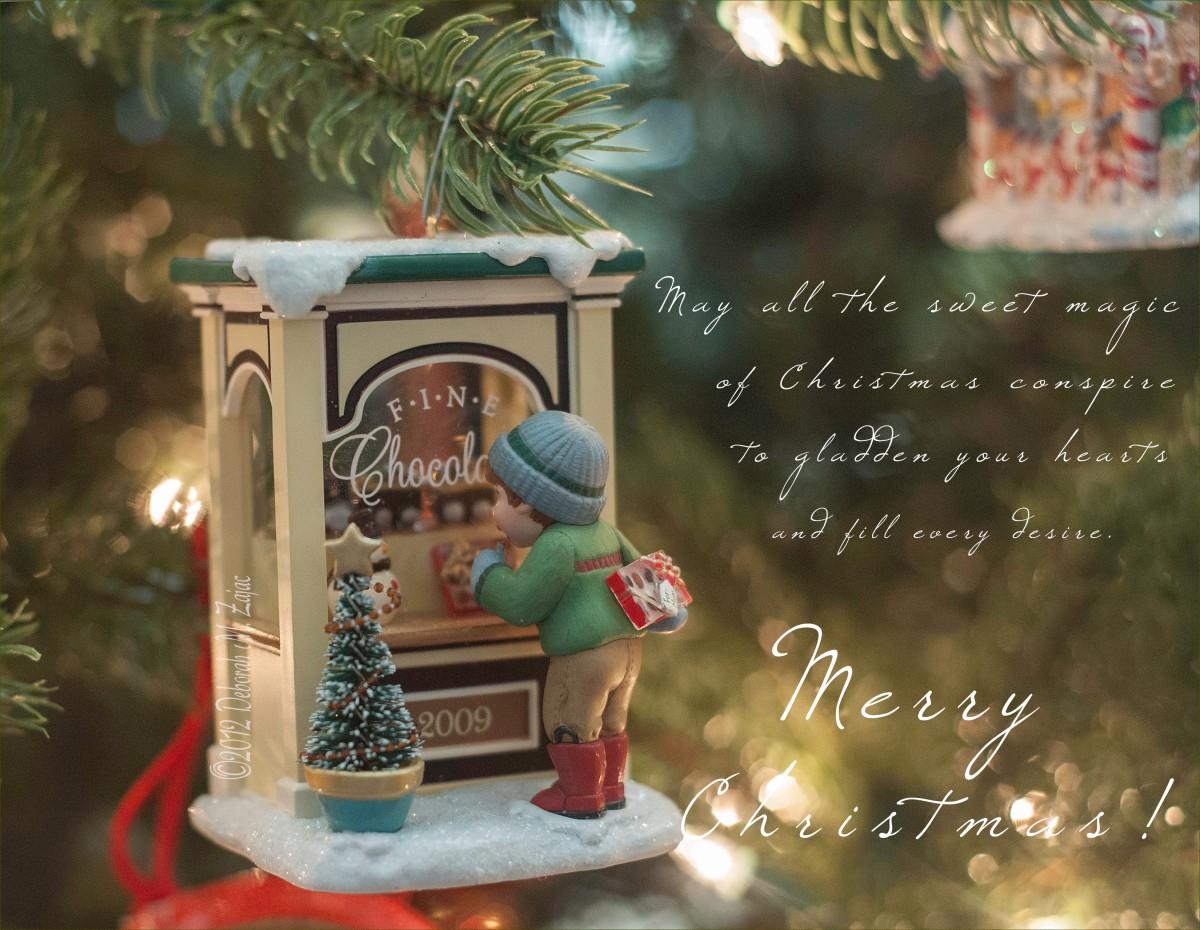 Sweet magic of Christmas