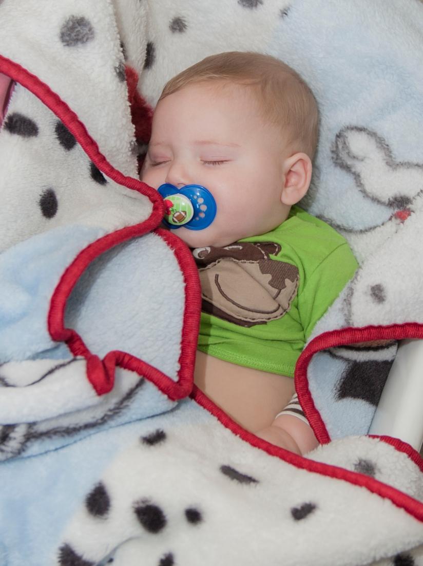 20130618_3436 Jaxon sleeping in basket crop