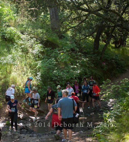 5 Crossing the creek_4944