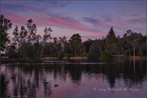 Sunset Los Gatos, CA