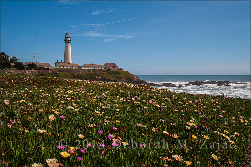 A Spring afternoon at Pigeon Point Lightstation