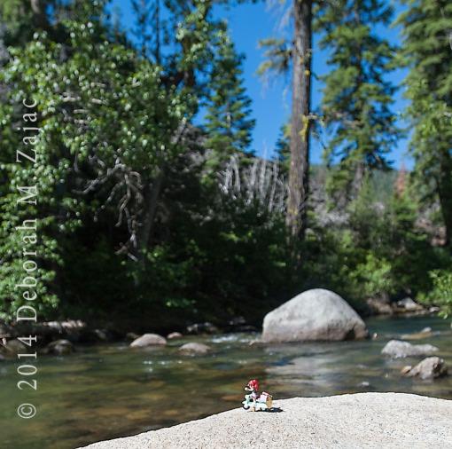 Travelerette on the  Stanislaus River