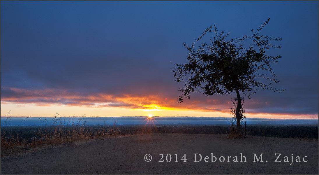 Daybreak Santa Clara Valley