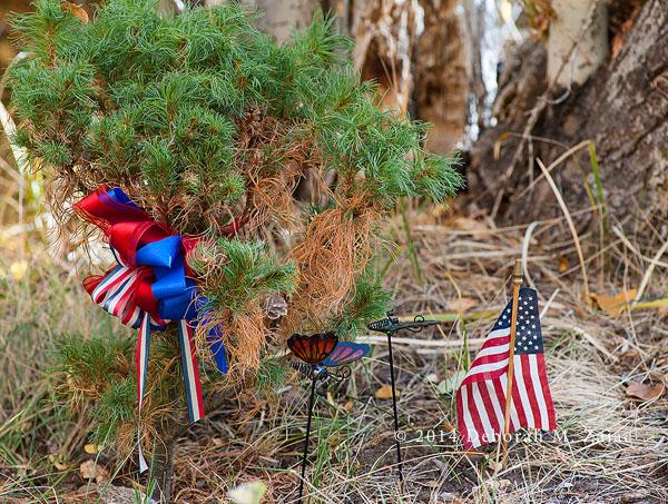 Memorial at Intake Lake 2