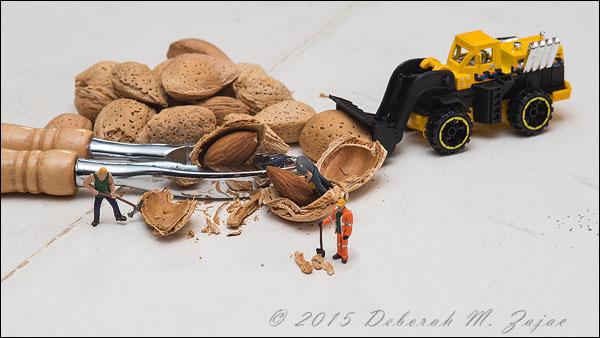 The Nut Job Alternative
