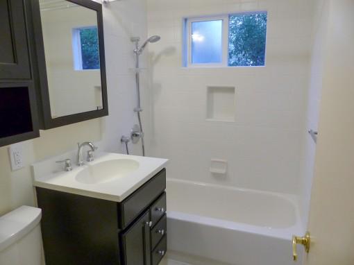 Day 16 Hall Bathroom Vanity Tub and Shower
