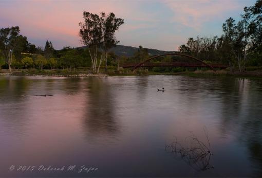 Vasona Lake Sunset