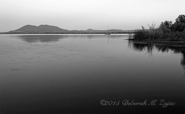 Monochrome Madness 2 13/52 Water