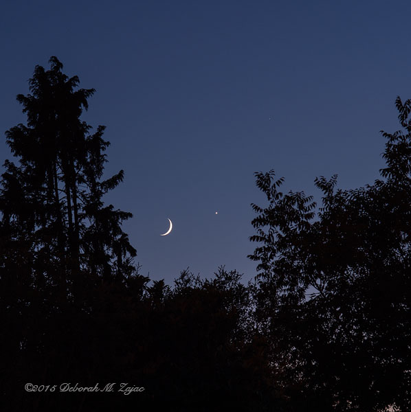 New Moon Venus and a Faint Jupiter