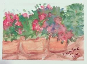 Impatiens II Watercolor