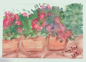 Impatiens II Watercolor