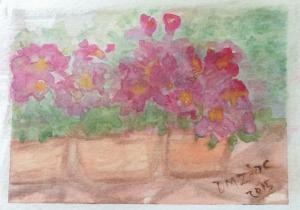 Impatiens III Watercolor