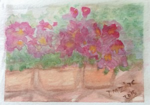 Impatiens III Watercolor