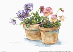 Jodi Jensen Watercolor Impatiens