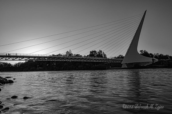 Sundial Bridge, Turtle Bay Redding CA, USA