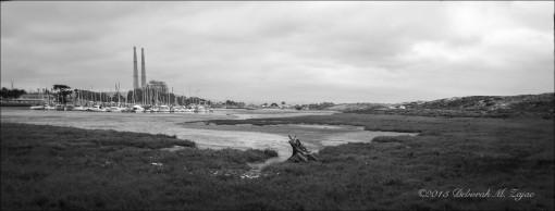 MM2 24 of 52 Moss Landing Low Tide