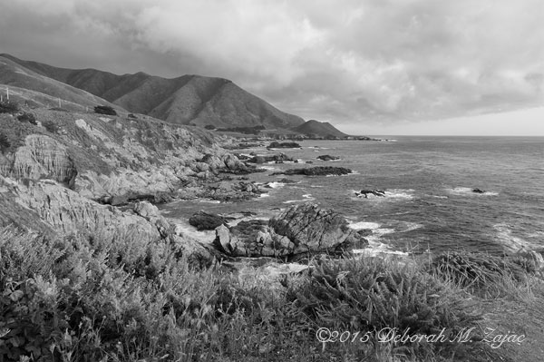 Monochrome Madness2-32 of 52 Big Sur_5518