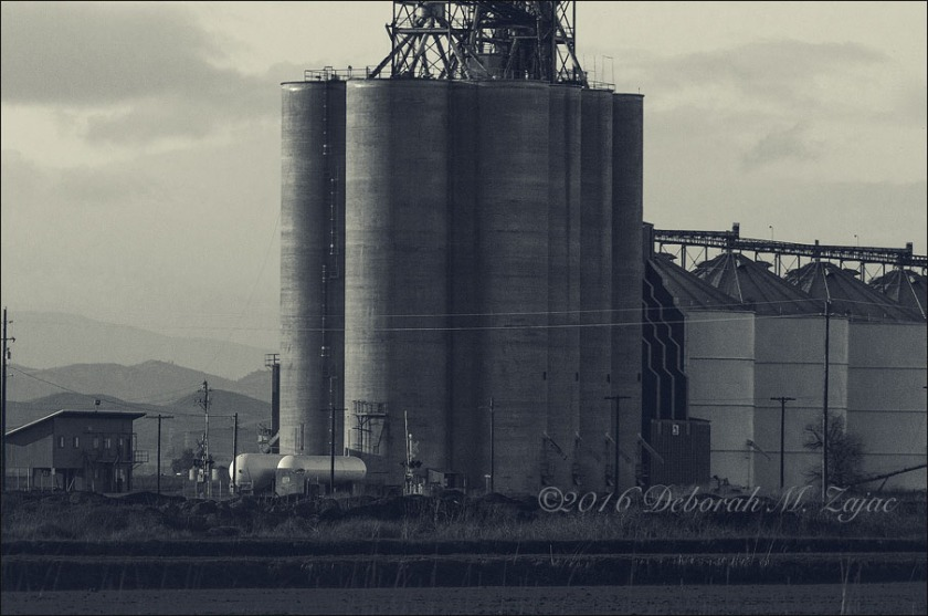 MM2 42 of 52 Rice Silos Sacramento Valley CA