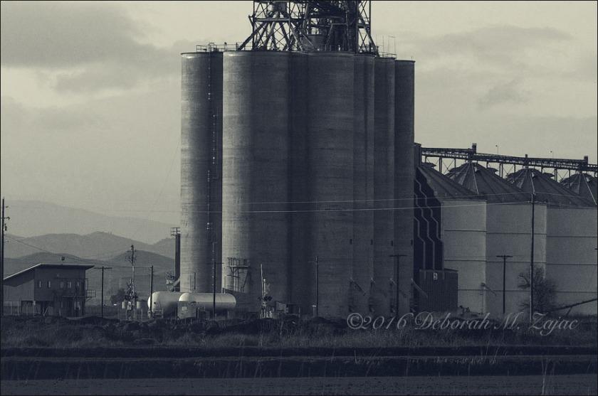 MM2 42 of 52 Rice Silos Sacramento Valley CA