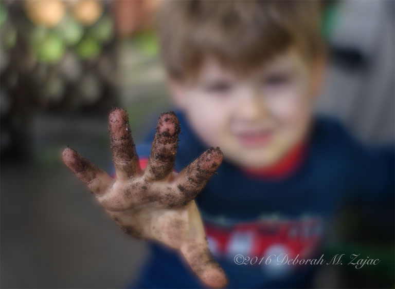 Playing in the Mud after a Morning Rain