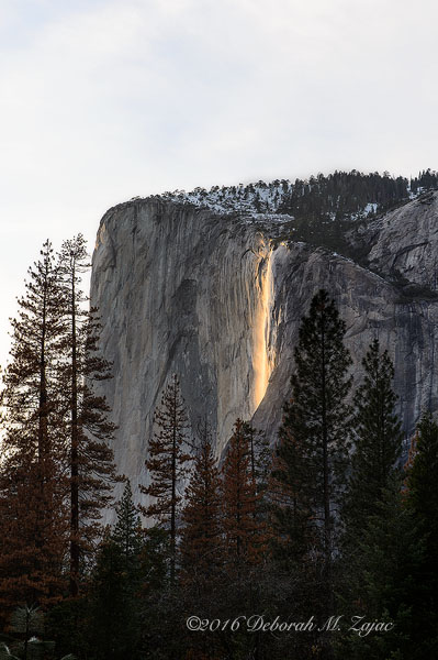 Horsetail Fall February 19 2016