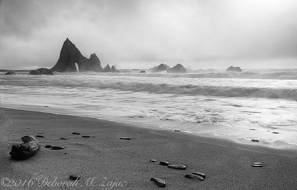The Fog Rolls in Martin's Beach, CA
