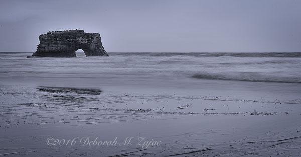 Natural Bridge State Beach Monochrome