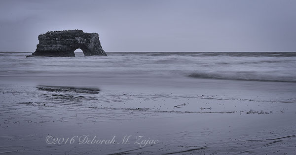 Natural Bridge State Beach Monochrome