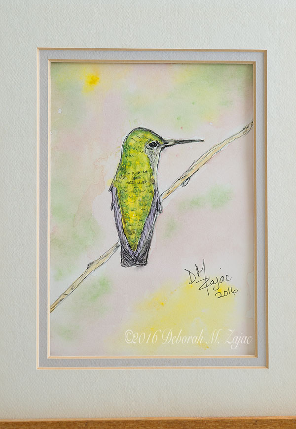 Watercolor- Anna's Hummingbird