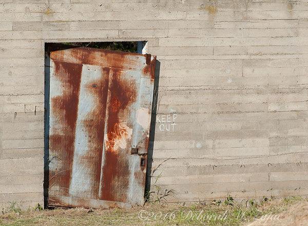 Rusty Door- Photography