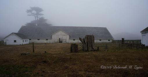 Dairy Barn Pierce Point Ranch