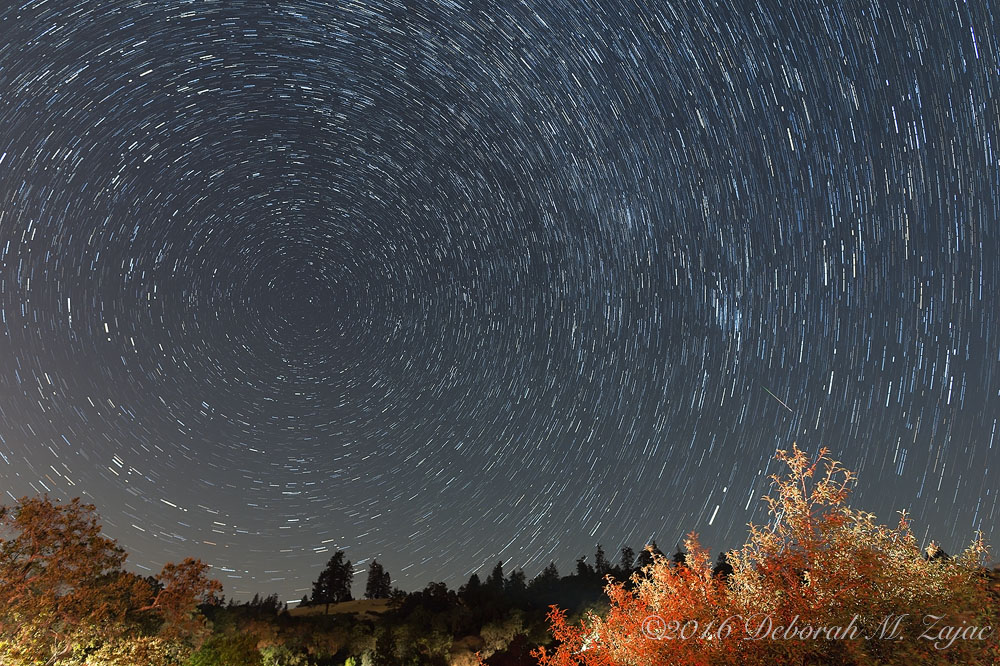 Star Trails with Perseid Meteor