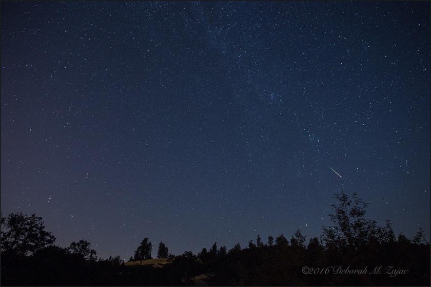 Perseid Meteor 2016