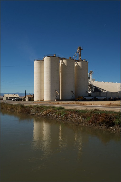 Rice Silos Central California