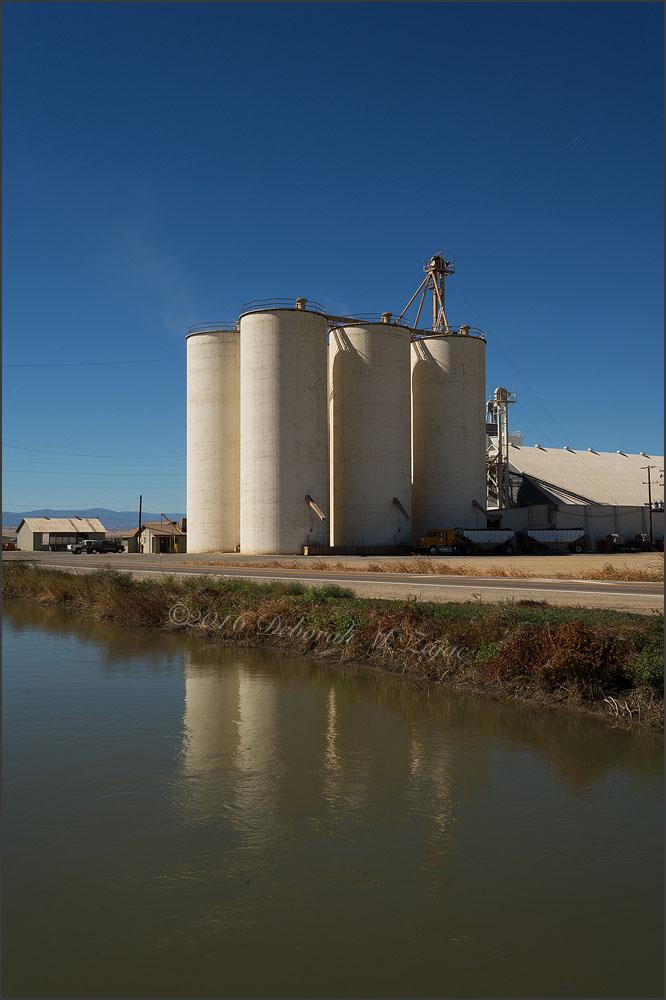 Rice Silos Central California