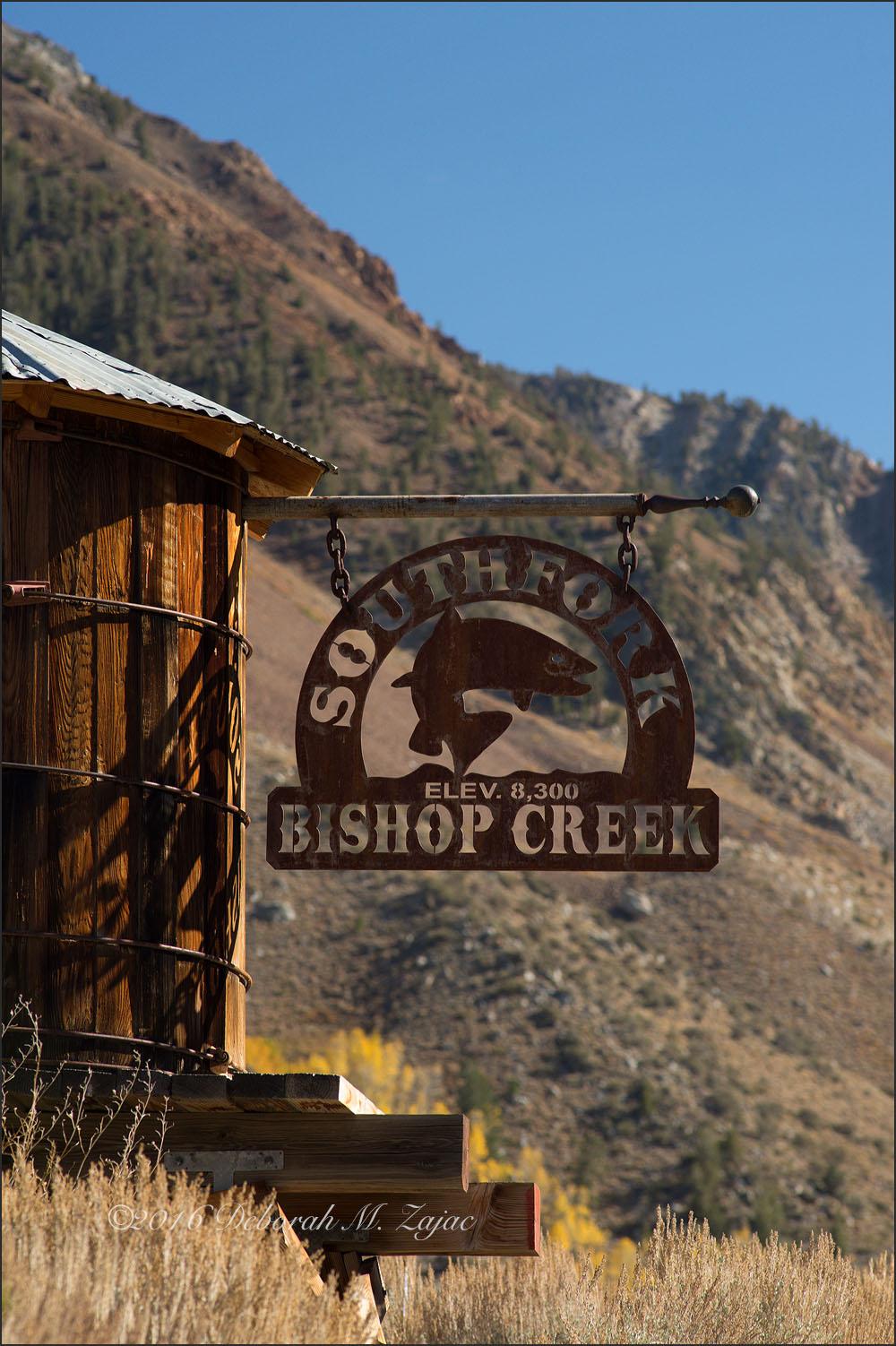 South Fork Bishop Creek Canyon