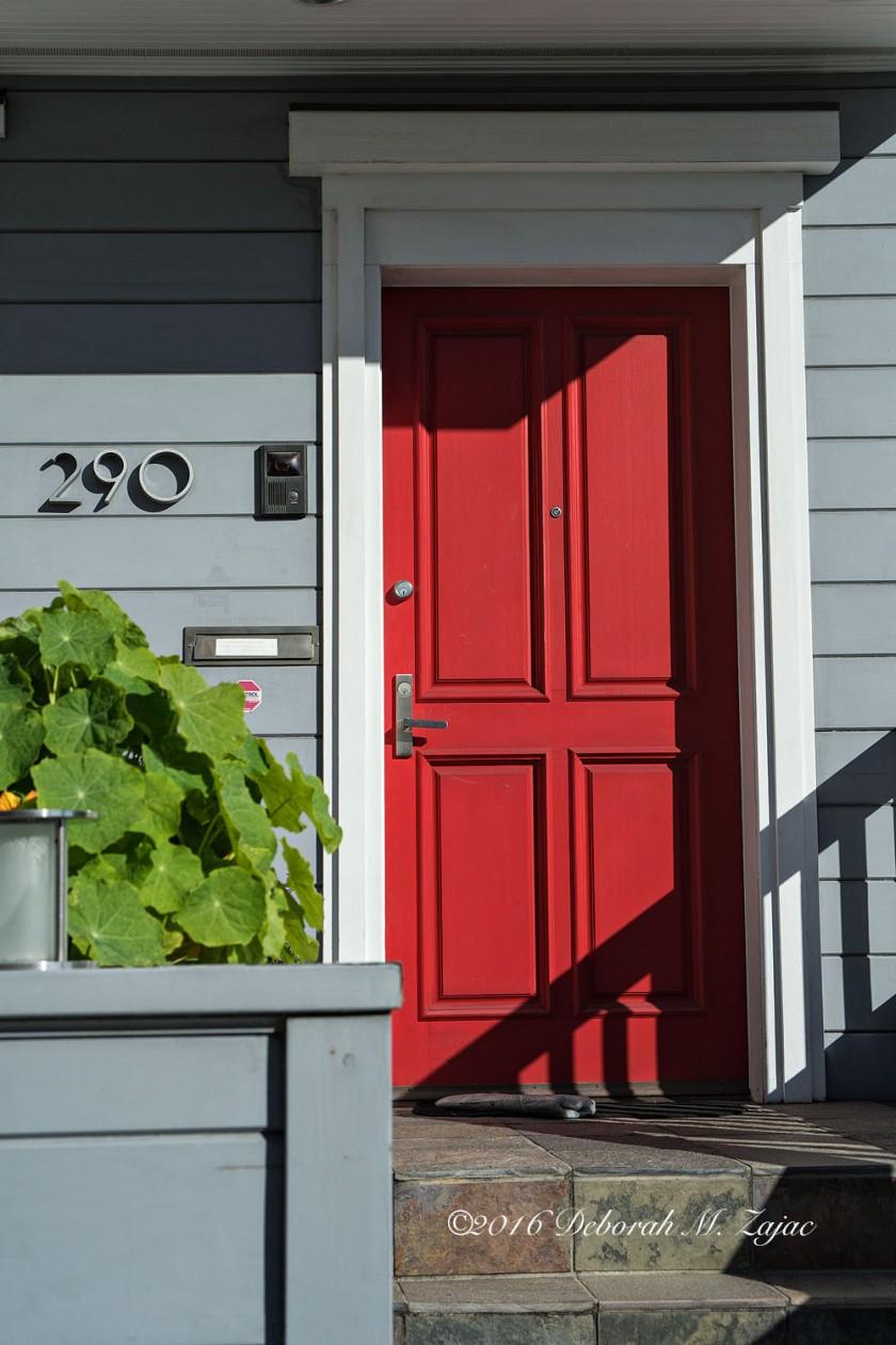 Red Door N°290