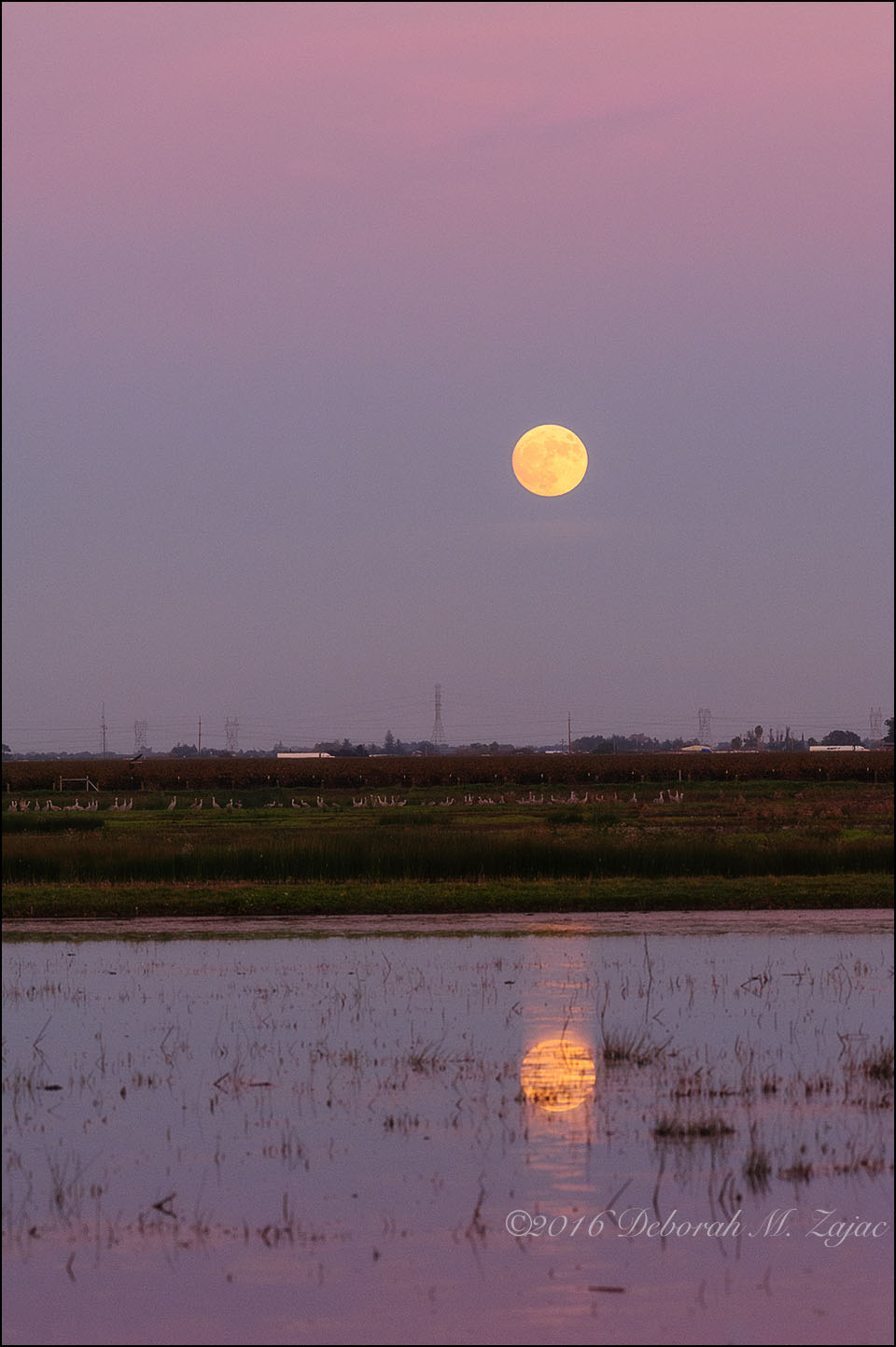 super-moon-and-reflection