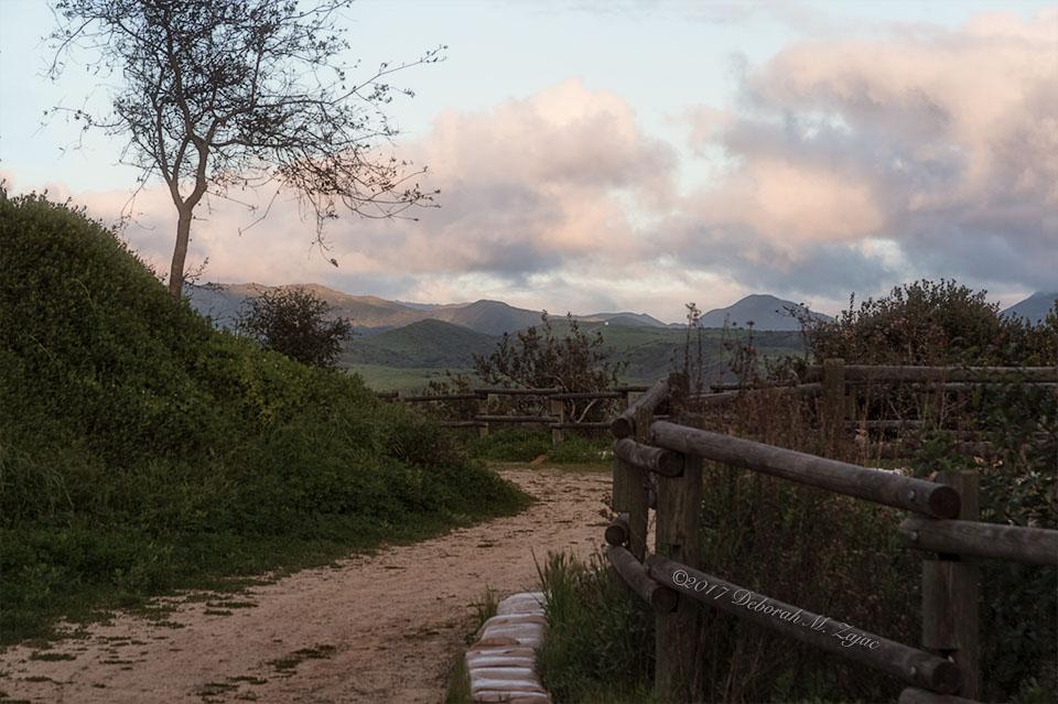 cristianitos-trail_dmz9261