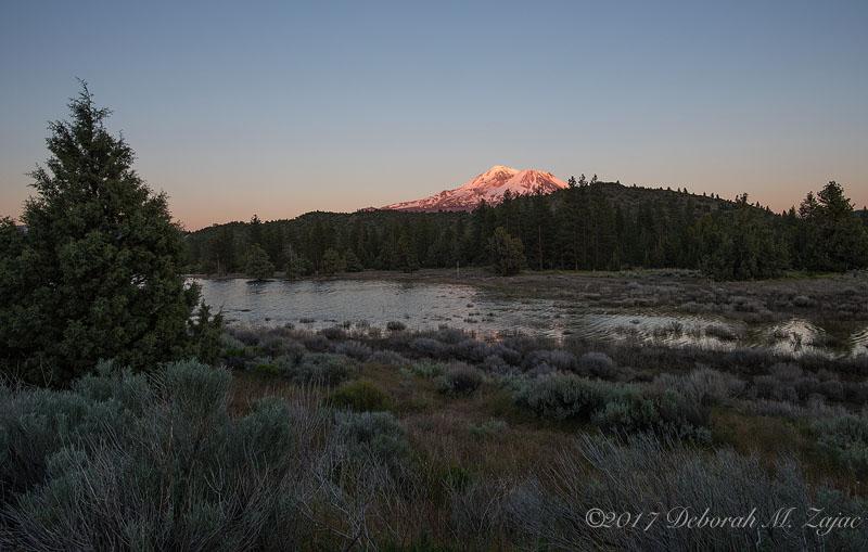 Mt Shasta Alpine Glow