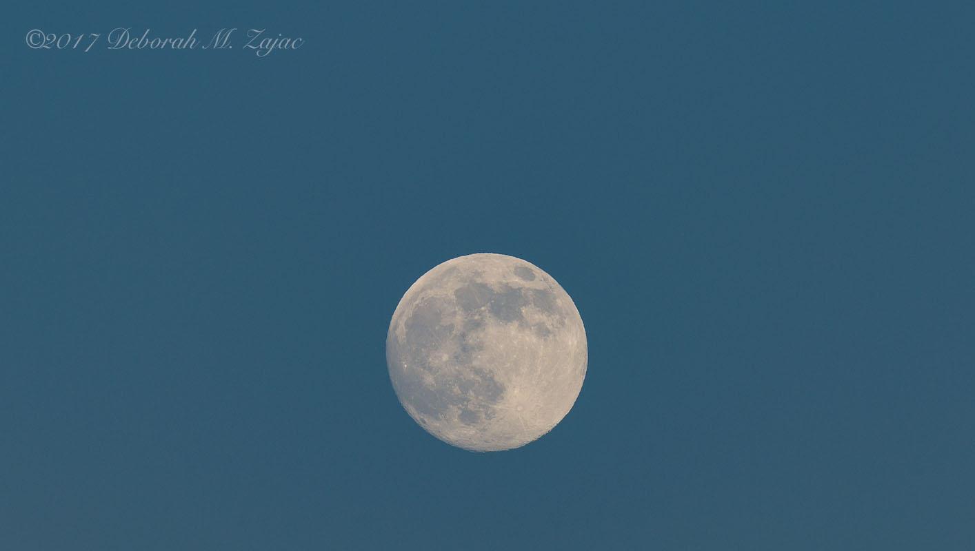 July Buck Moon Waxing 98.8%