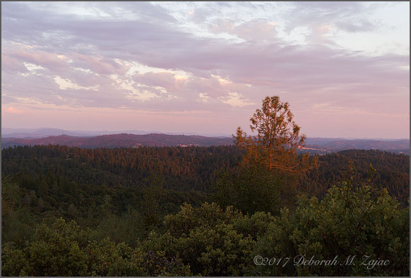 Wordless Wednesday 32/52 Amador County