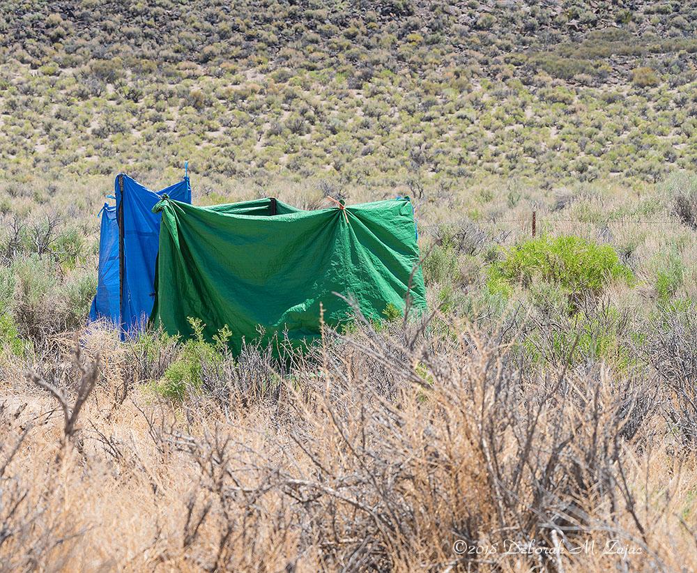 Lower Camp Privy