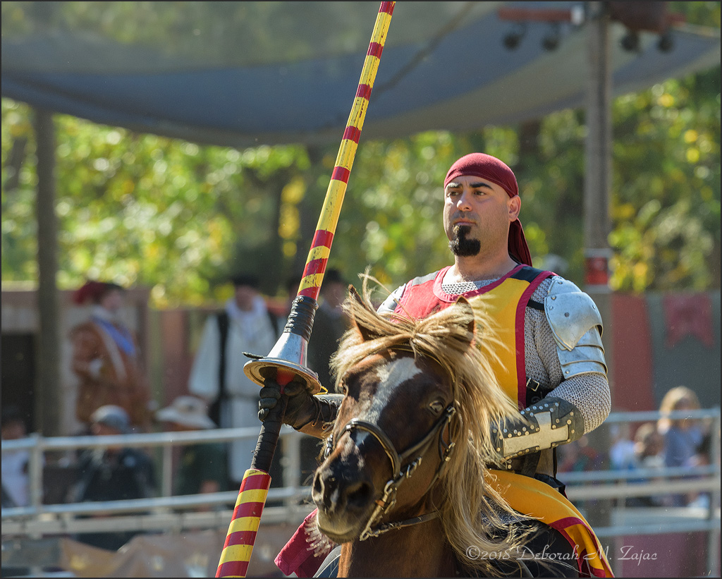 The Spanish Knight_DMZ6481