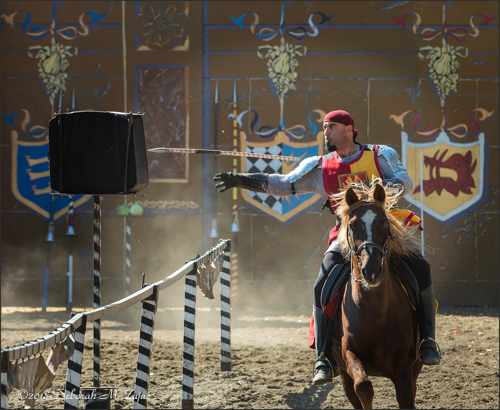 The Spanish Knight_DMZ6511