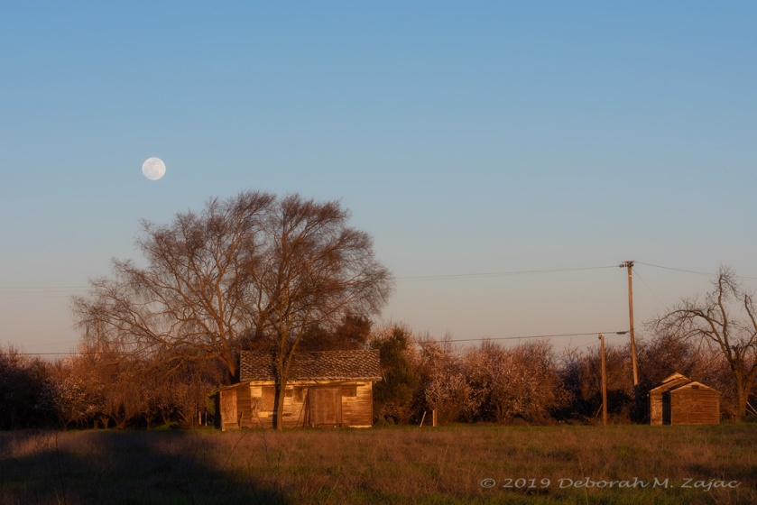 February's Rural Full Moon