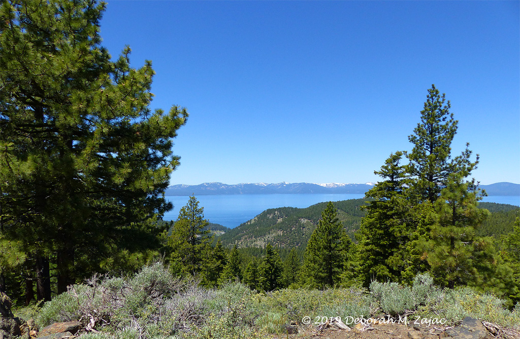 Lake Tahoe from the Tahoe Rim Trail