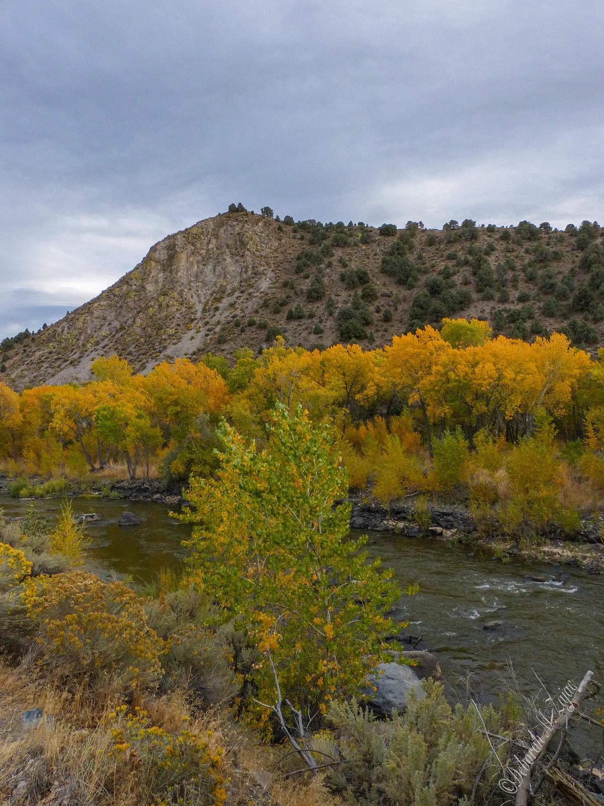 Carson River Canyon
