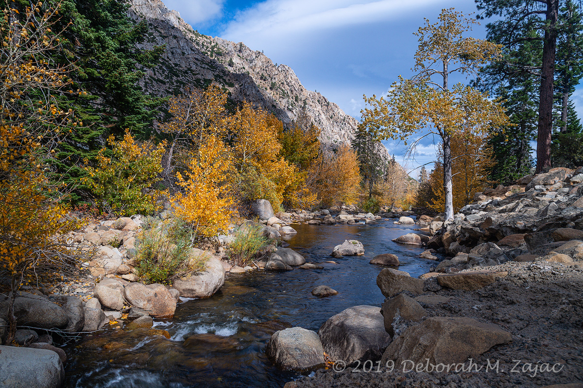Fall along the Walker River